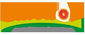 logo-sinetrol
