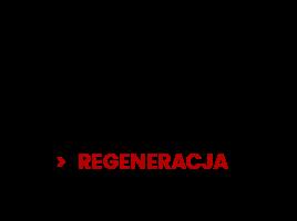 Odżywki i suplementy na Regenereację